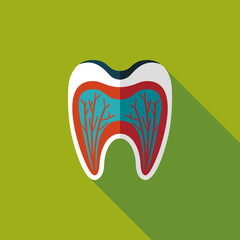 Tooth Flat style Icon with long shadows