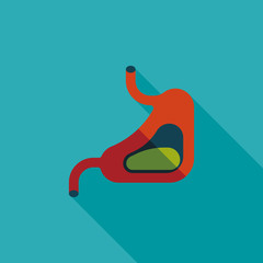 Human stomach flat icon with long shadow