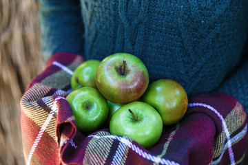 Female hands holding green apples