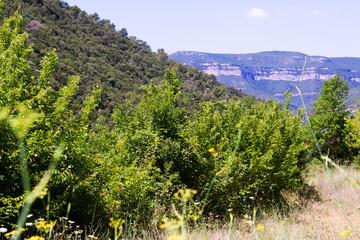 View of Montseny. Catalonia