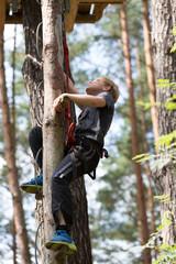 Junge klettert einen Stamm hoch