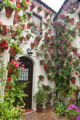 Flowers Decoration of Courtyard, typical house in Spain, Europe