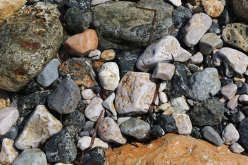 Background of  the sea stones