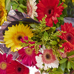 colorful gerber daisies bouquet closeup