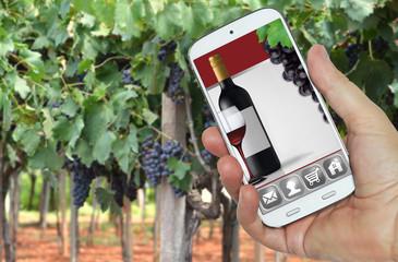 Wine App su smartphone