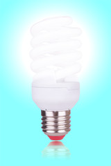 economical bulb on blue background