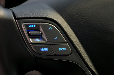 steering wheel button