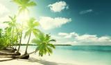palms and sea