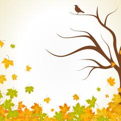 Herbst Hintergrund Blätter