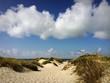 canvas print picture - sand dunes