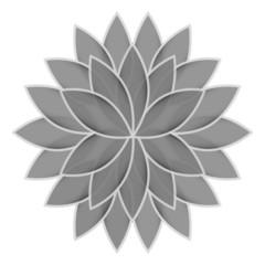 Gray flower lotus