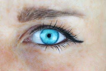 Blaues Frauenauge
