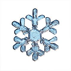 macro snowflake ice crystals present natural