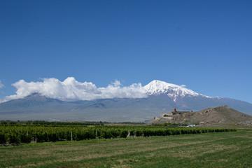 Khor Virap, Ararat and vineyard