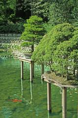 jardin japonais avec rivière et carpes koi