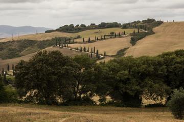 Paesaggio della Val d'Orcia, Toscana