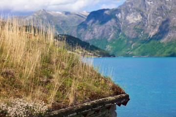 Grasdach im Jostedalsbreen Nationalparkcenter