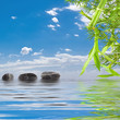 Leinwandbild Motiv bambou aquatique zen détente relaxation