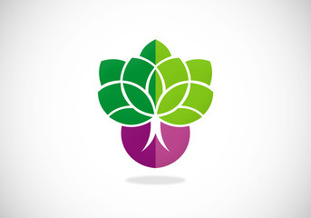 plant leaf nature seed vector logo