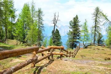 Refugio Palmieri, Croda di Lago, Dolomites mountains