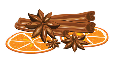 Cinnamon, anise and orange on a white background. Vector