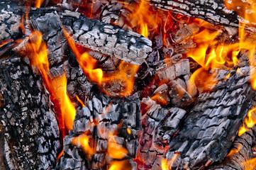 red wild fire