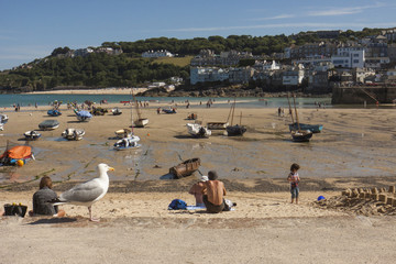 Beach view at St. Ives with seagull