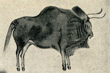 Cave art - bison from Altamira cave (Spain)