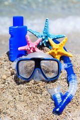 flipper on a sandy beach