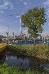 Nature versus Industry