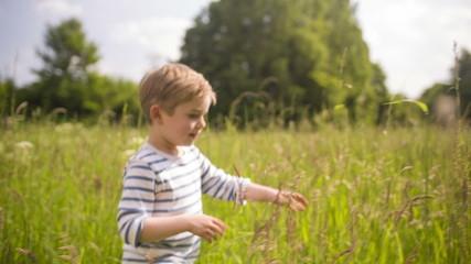 Little Boy Walking Through Tall Grass