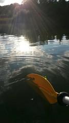 Paddle dip