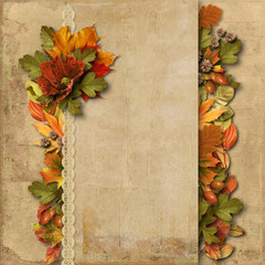 Vintage background with gorgeous border autumn decorations