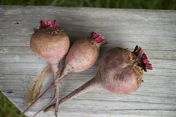 organic beets