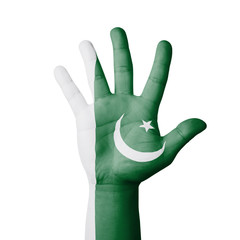 Open hand raised, Pakistan flag painted