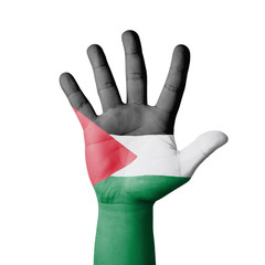 Open hand raised, Palestine flag painted