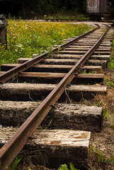 Old Damaged Track With Grass