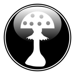 Amanita button