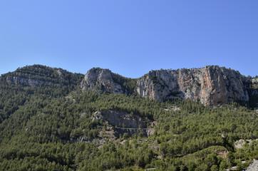 Paisaje de montaña con mucha vegetación sobre la roca madre