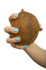 kokos w dłoni