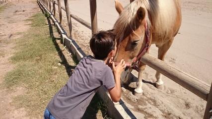 Niño besando a caballo marrón