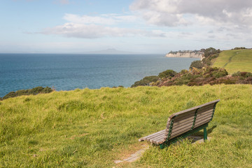 empty bench on green meadow above Long Bay