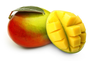 Mango fruit isolated.
