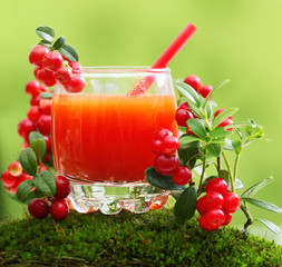 Berry juice and forest cowberry