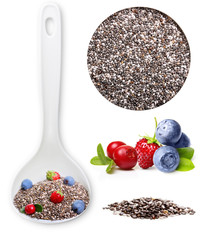 Chia seed isolated