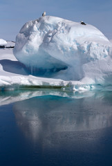 small iceberg in the water near the Antarctic islands are sittin