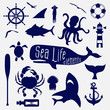 sea life element,icon set - 69296805