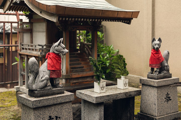 A pair of stone fox statues.