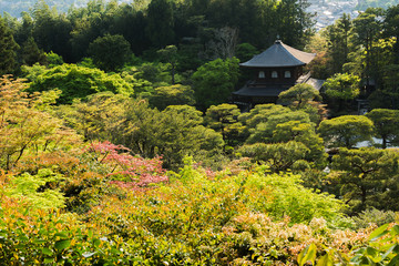 Overlooking the Ginkakuji Temple in Kyoto.
