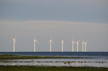 Wind turbines at the coast